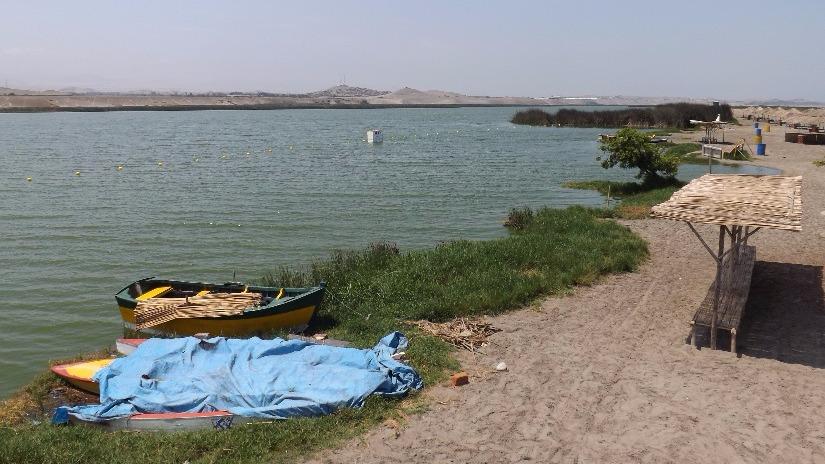 Huaura: hallan restos óseos en albuferas de Végueta - RPP Noticias