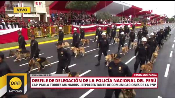 Los canes en la Parada Militar.