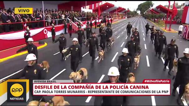 La delegación de la Policía Canina es una de las más esperadas del desfile.