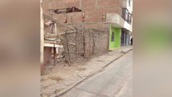 Usan corralón abandonado como fumadero en Chincha Alta - RPP Noticias