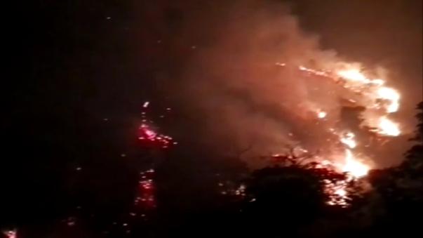 Reportan cuatro incendios forestales