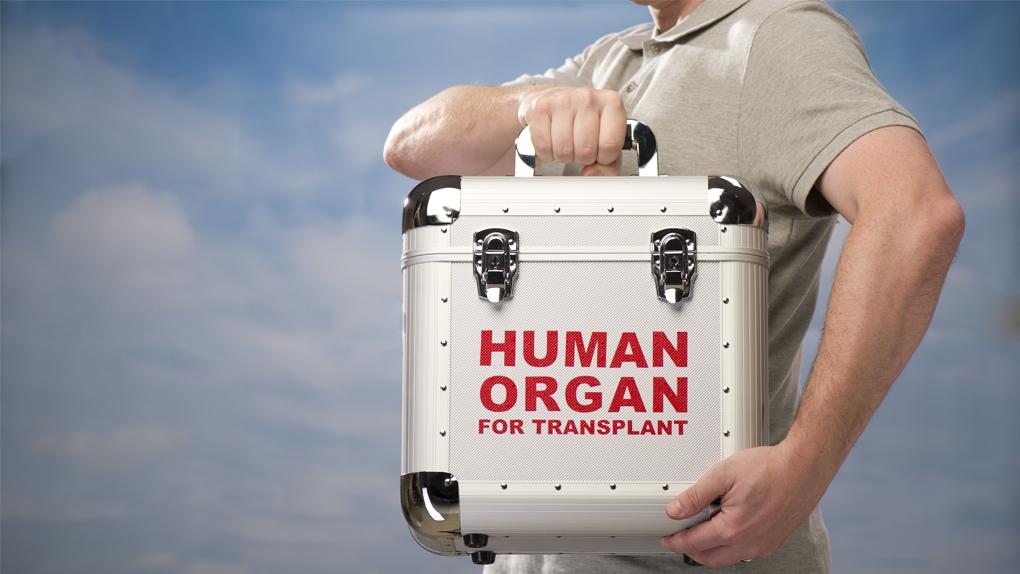 Los órganos son muy delicados, no pueden ser trasladados en bolsas plástico o con hielo, explicó el doctor Elmer Huerta.