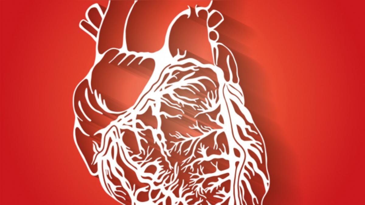 El doctor Elmer Huerta detalló de qué se trata el síndrome del corazón roto.