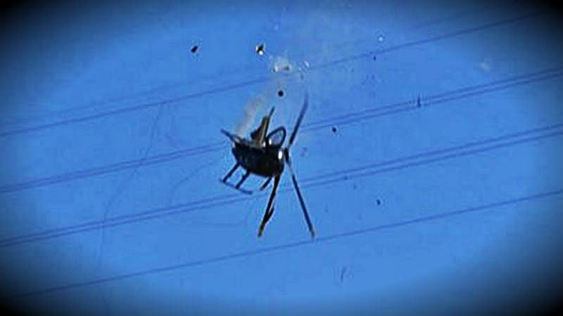 El helicóptero regresaba de rescatar el cuerpo de una excursionista cuando choco con cables de alta tensión.