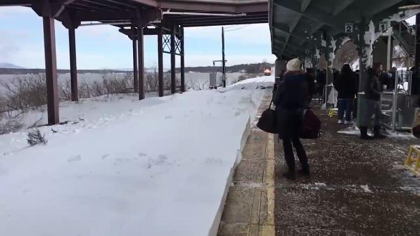 El suceso ocurrió en la estación de Rhinecliff-Kingston.