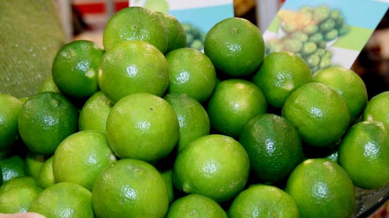 Ministro dijo que hay otras alternativas al limón.