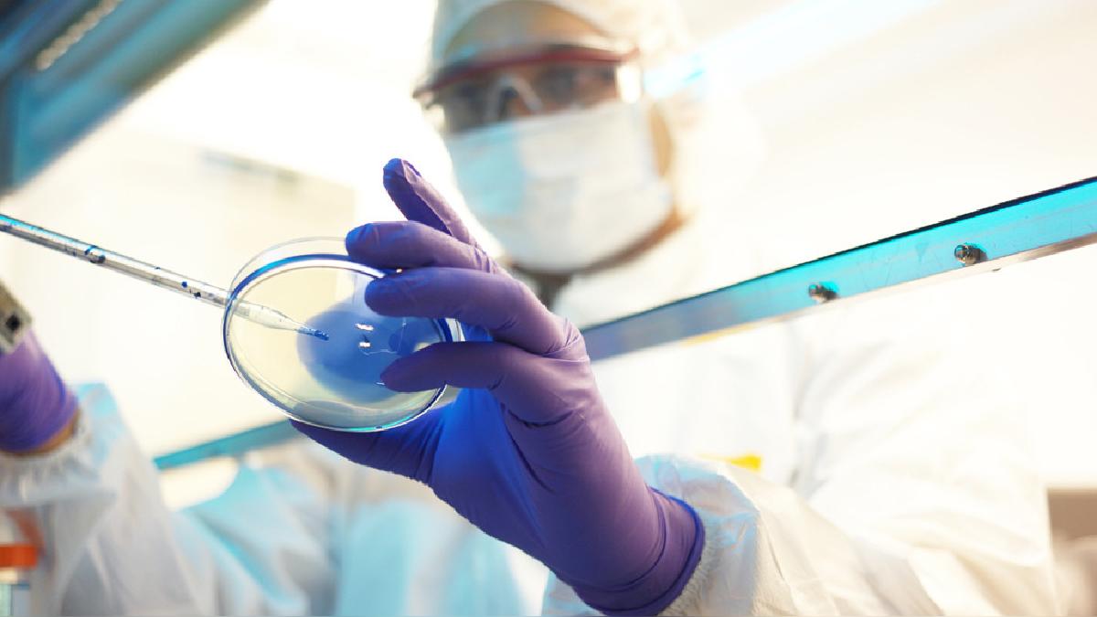 Al paciente se le deberán extraer muestras de sangre y de secreciones respiratorias para las pruebas diagnósticas.