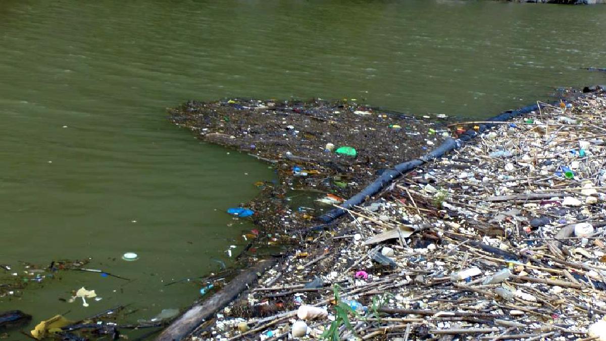 Se hallaron restos de animales y residuos hospitalarios en el río Huallaga.