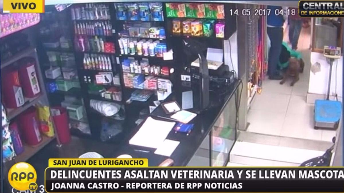 El robo ocurrió en San Juan de Lurigancho.
