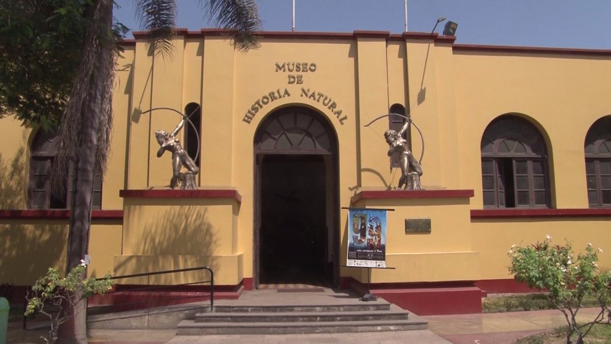 Esta es la entrada del Museo de Historia Natural.
