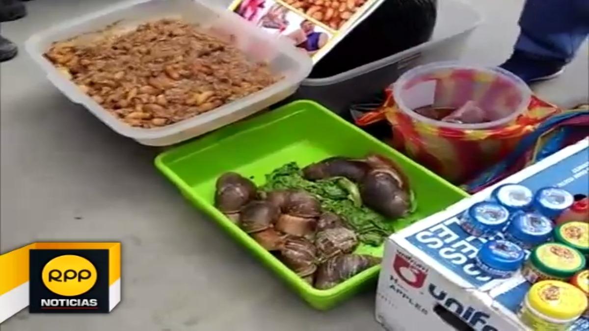 Los venden a los animales vivos en cinco soles los gusanos y veinte soles los grandes caracoles.