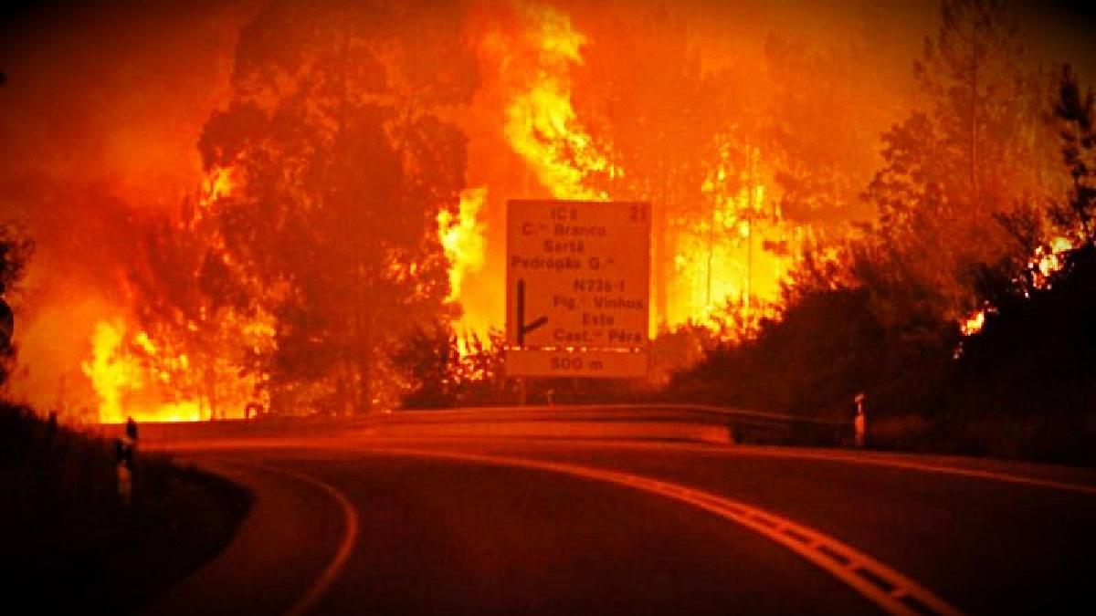 El incendio inició en los bosques de Pedrógao Grande al centro de Portugal.