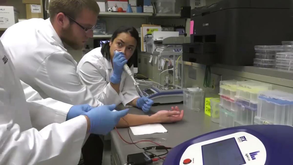 La tecnología, conocida como Nanotransfección de Tejido (TNT), inyecta código genético en las células de la piel, convirtiendolas en otros tipos de células necesarias para el tratamiento de enfermedades.