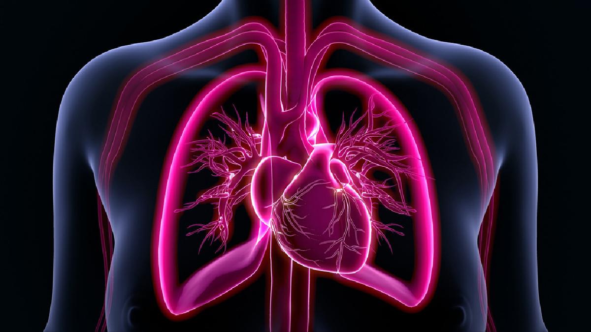 Los coágulos impiden la llegada de sangre al pulmón, desencadenando un infarto.