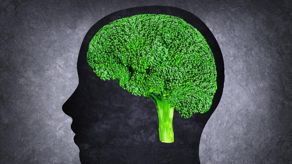 EL cerebro se puede adaptar a algunos hábitos alimenticios.