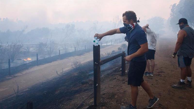 Los incendios comenzaron, por causas que aún se desconocen, el domingo por la noche.