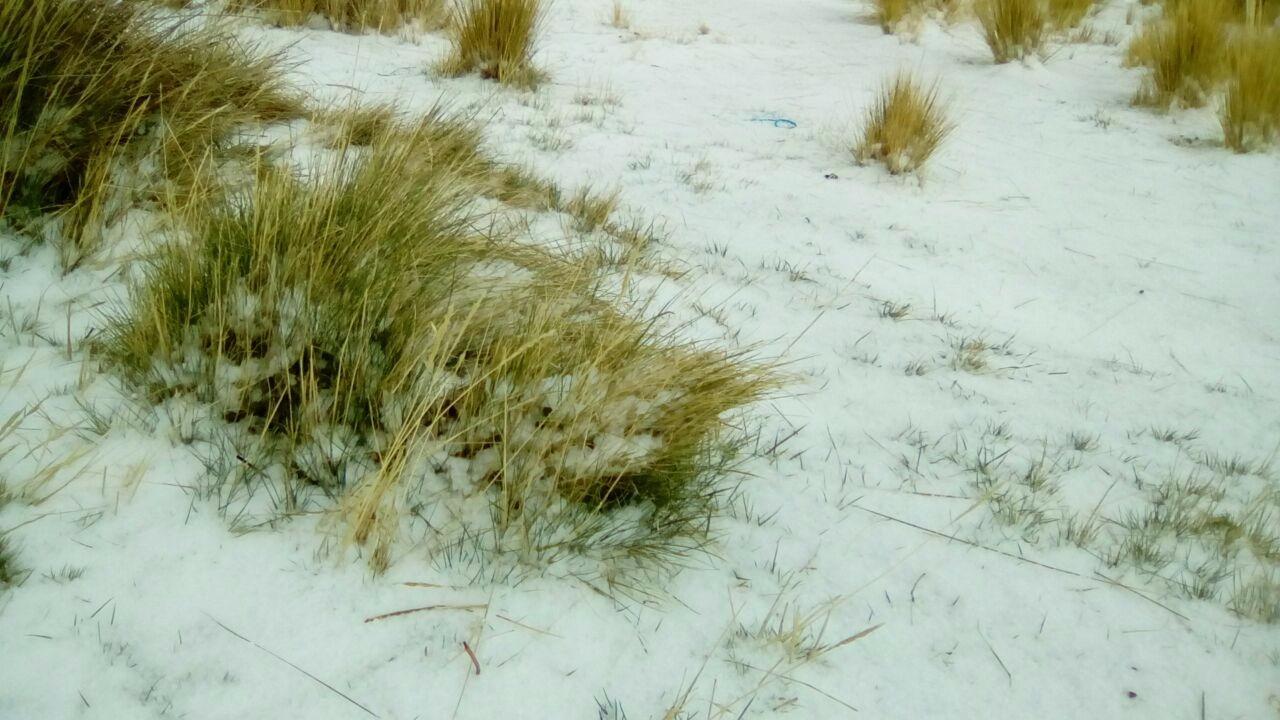 El fenómeno climático se reporto en las comunidades de la provincia de Carabaya.