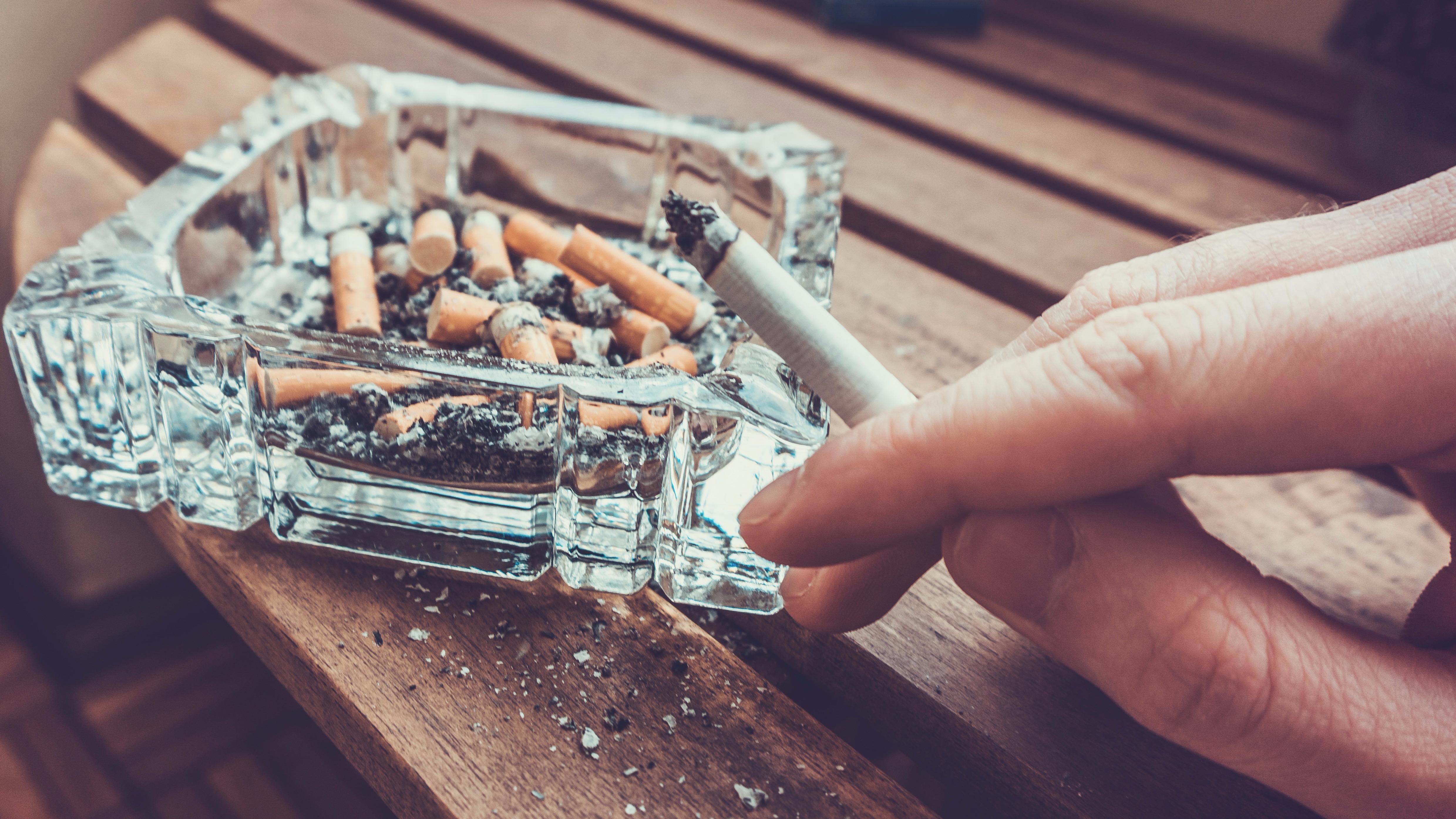 Polvo de tabaco es una toxina sigilosa, puede permanecer durante años y es resistente a agentes de limpieza potentes.
