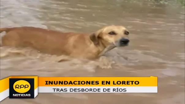 Inundaciones en Loreto.