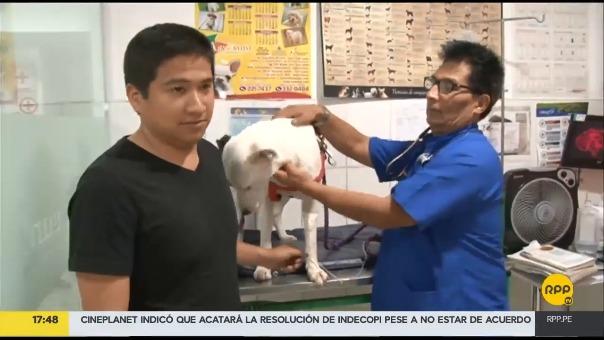 El joven comentó que no devolverá el perro a sus dueños, debido a que fue maltratado.