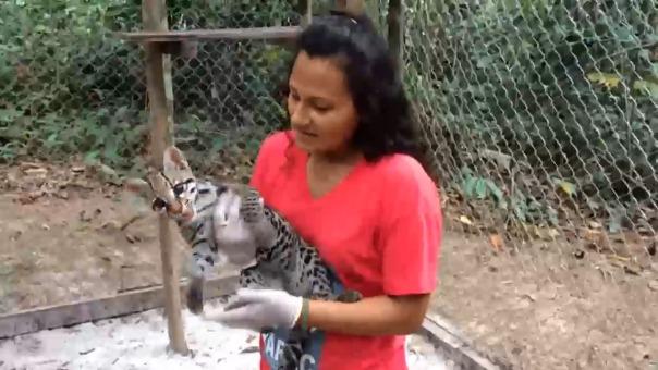 Centro de rescate de animales en peligro de extinción.