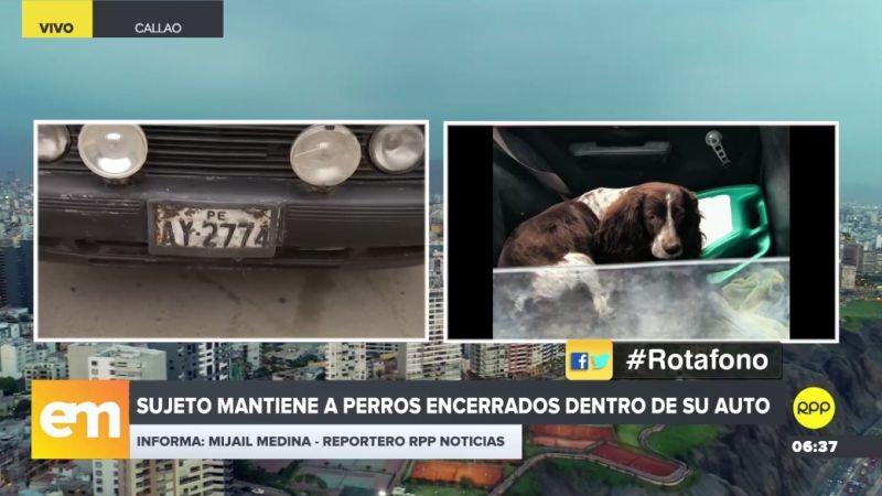 Vecinos de Bellavista denunciaron el caso a través del Rotafono de RPP Noticias.