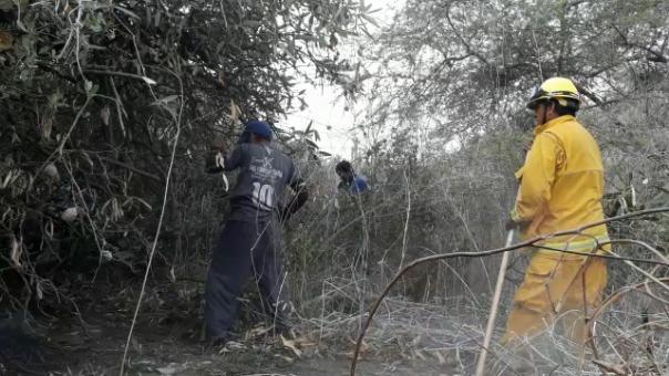 Trabajadores de la empresa Agropucalá también apoyan para pagar incendio.