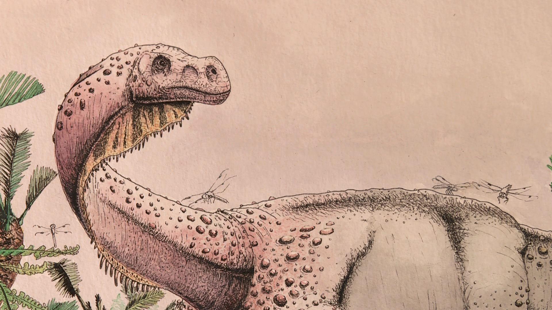 El nuevo dinosaurios bautizado como