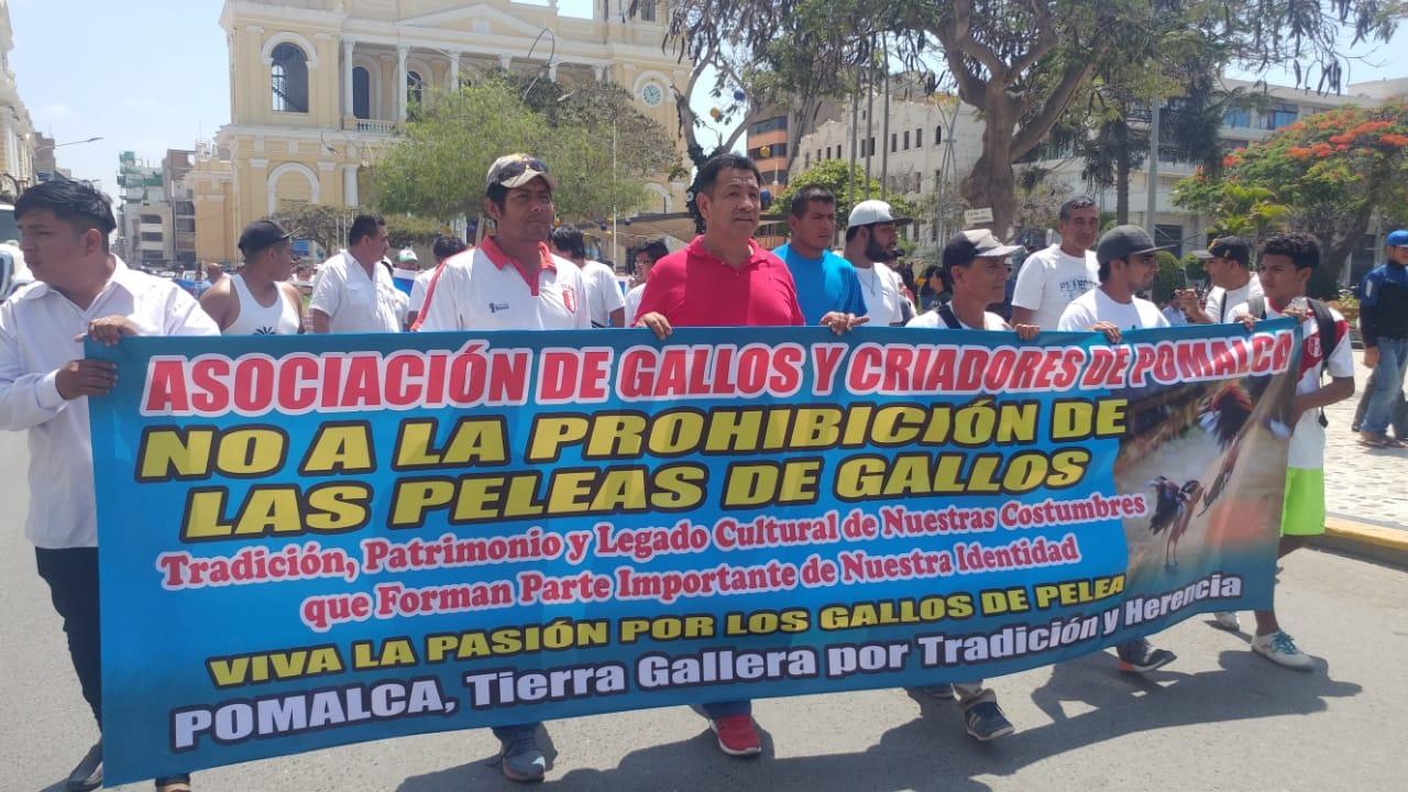 Criadores de gallos de peleas se movilizaron por las céntricas calles de Chiclayo.