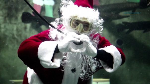 Papá Noel acuático sorprende a visitantes de un acuario en México.