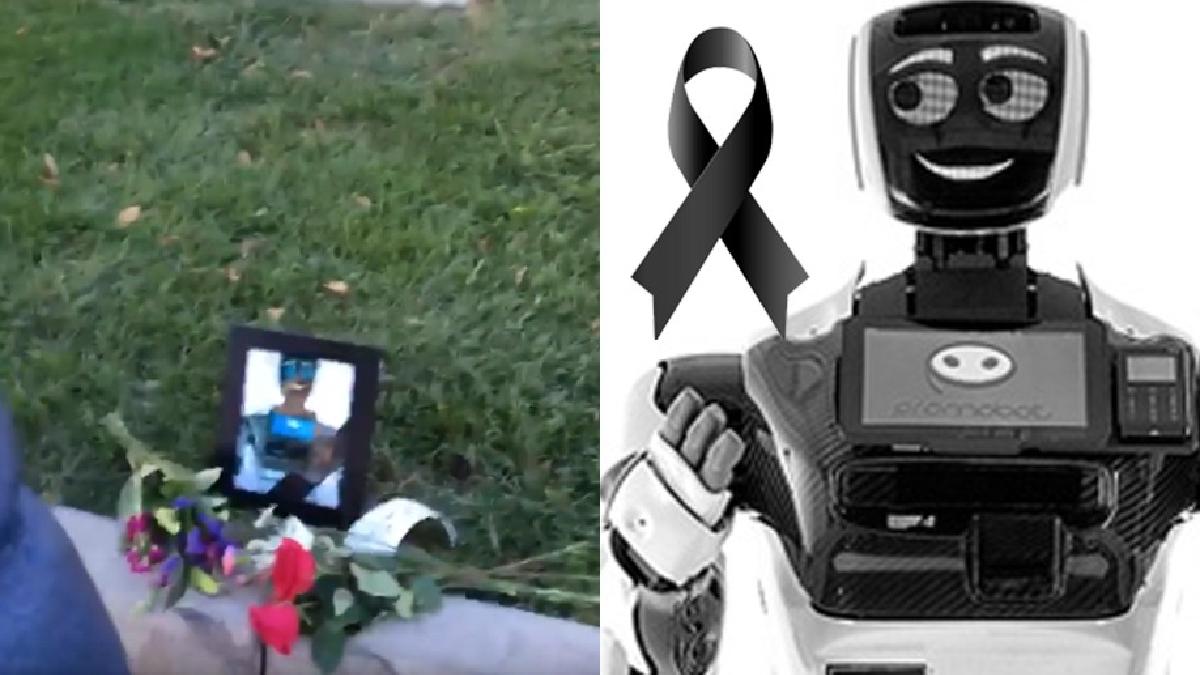 Descansa en paz, Promobot.