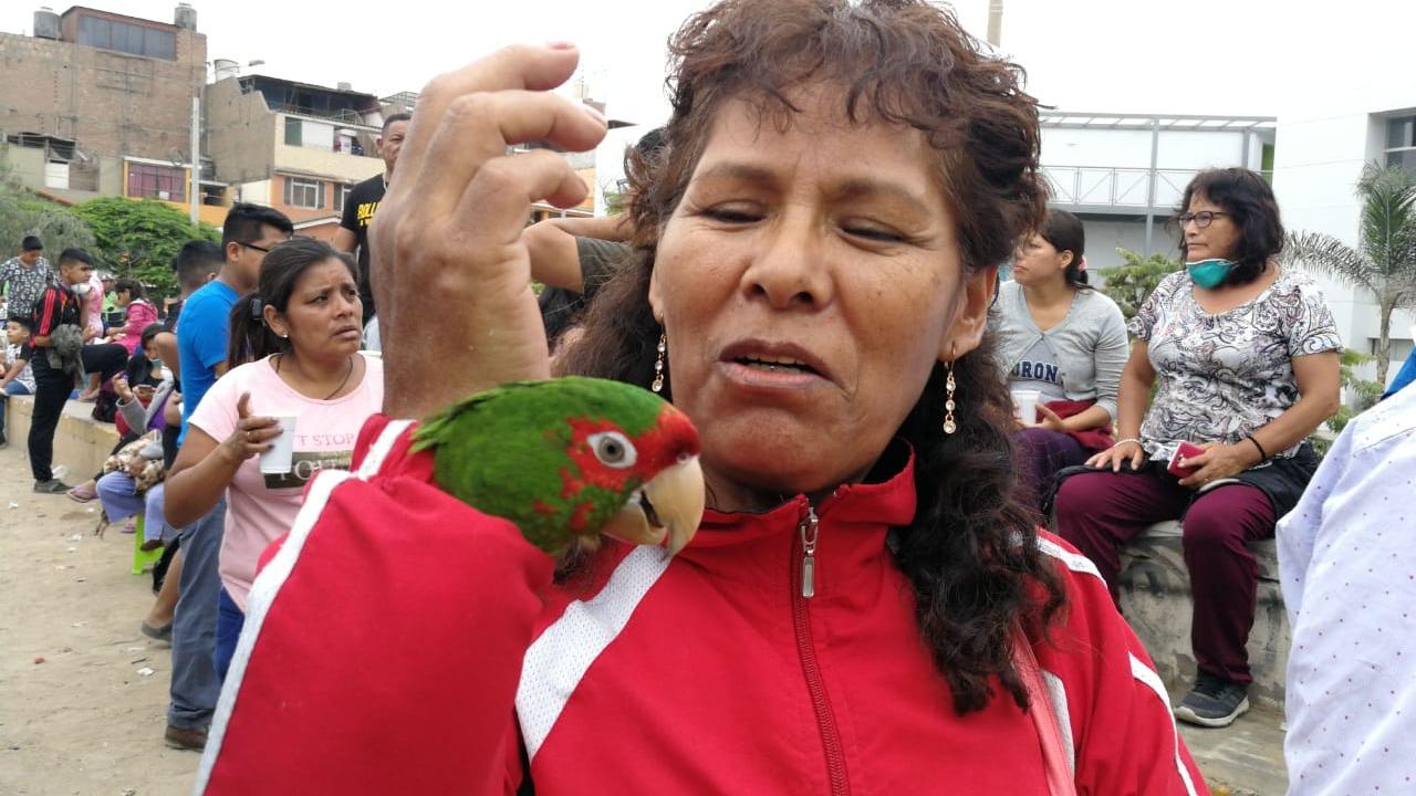 Gumercinda narró cómo fue el rescate de su mascota en RPP.