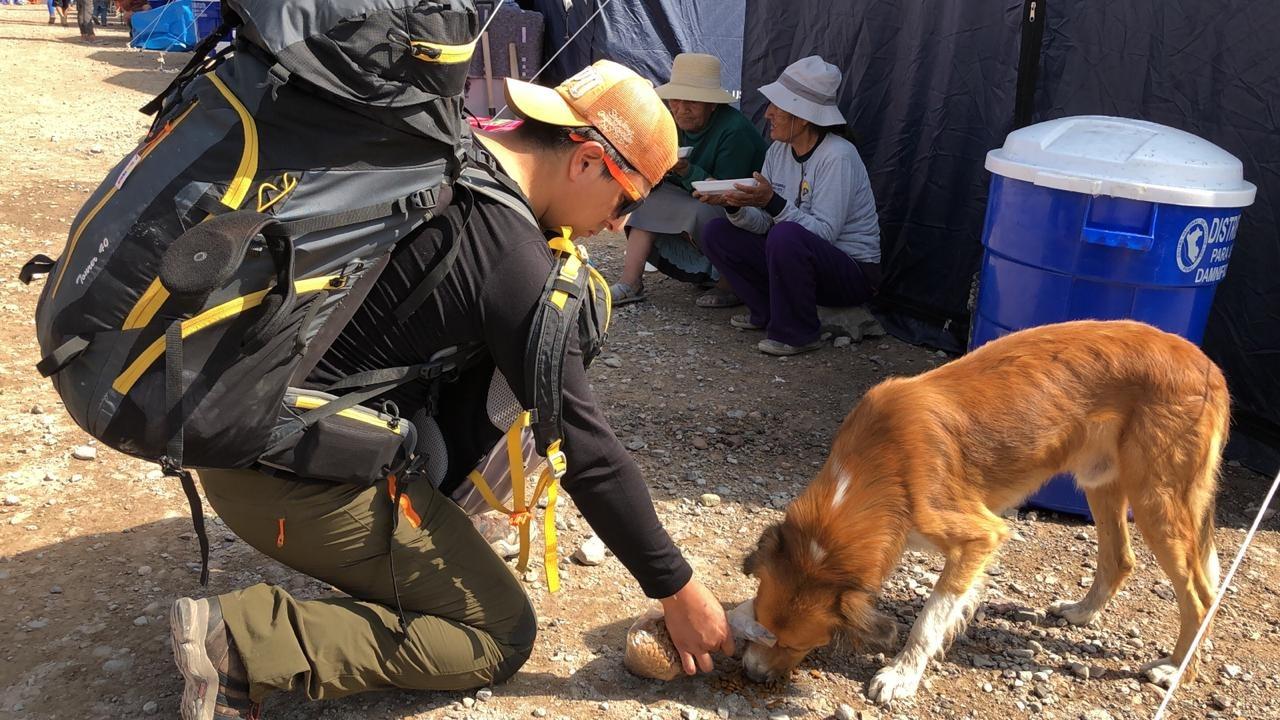 El veterinario Renzo Revilla llegó a la zona afectada en Tacna.