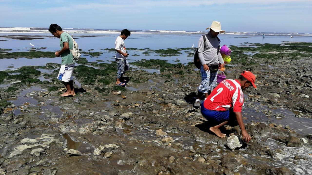 Pescadores buscan en orillas de playa