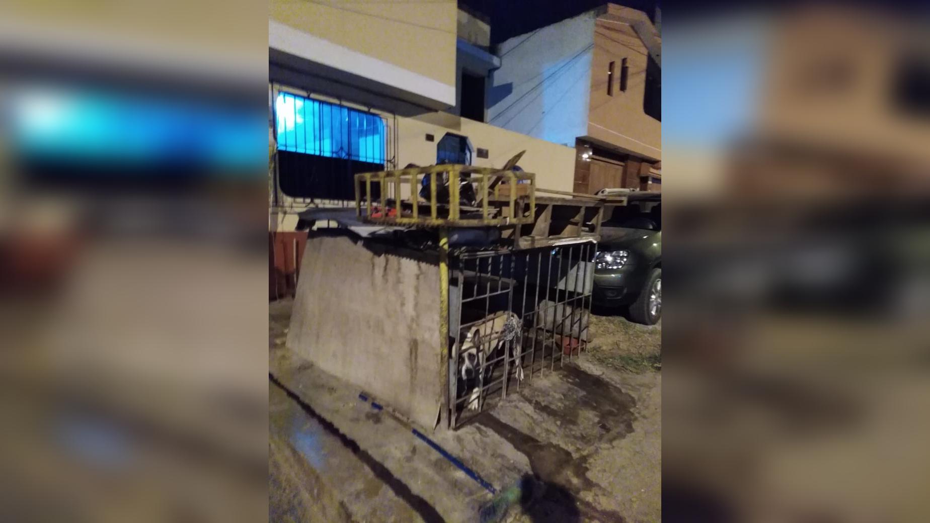 Vecinos denunciaron un caso de maltrato animal.