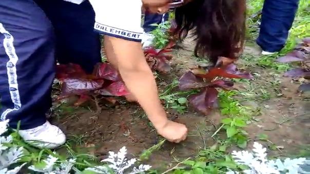 Niños realizaron estas labores junto a trabajadores del Segat.
