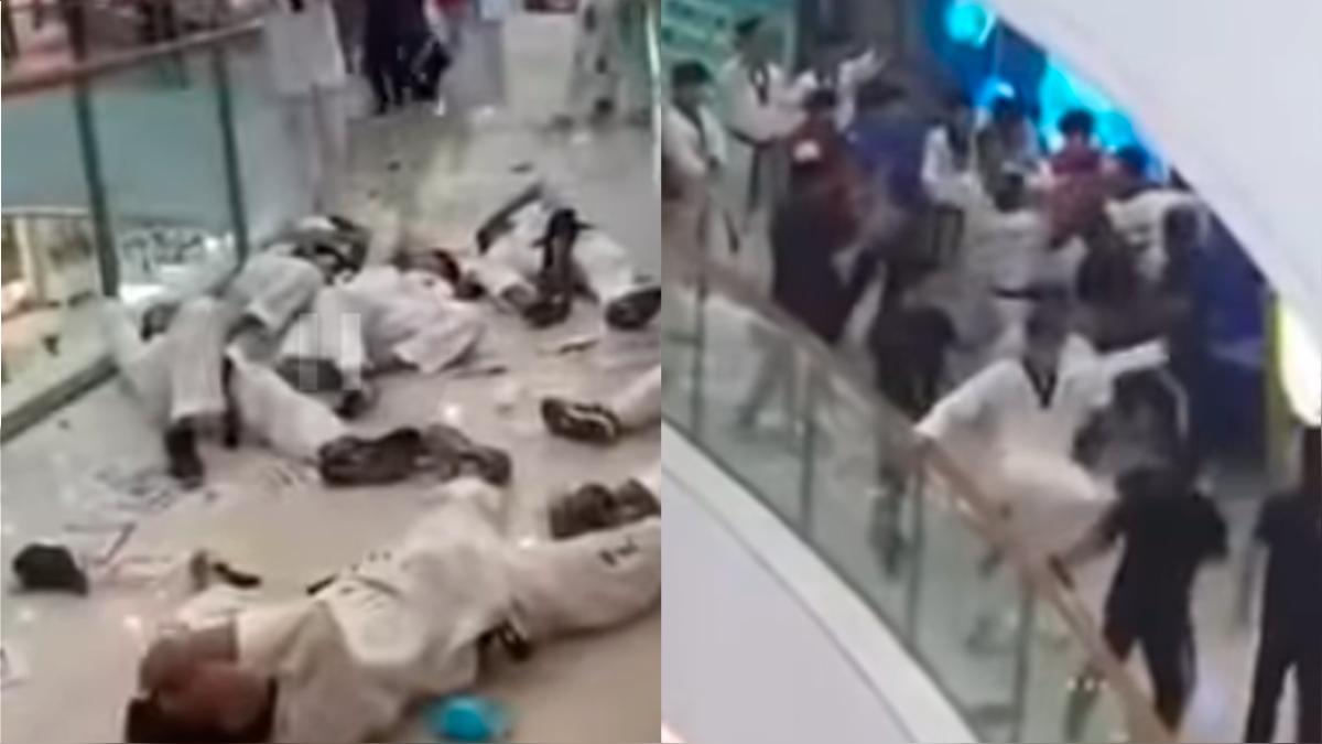 El video muestra la violenta gresca de artistas marciales.