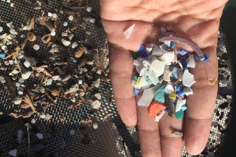 Plástico en Galápagos