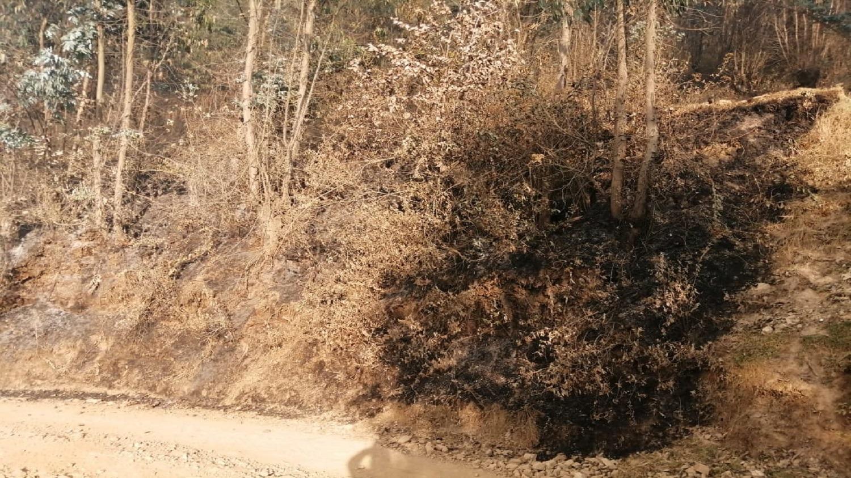 Los pastizales del lugar volvieron a incendiarse, cuando se pensó que se había apagado el fuego.
