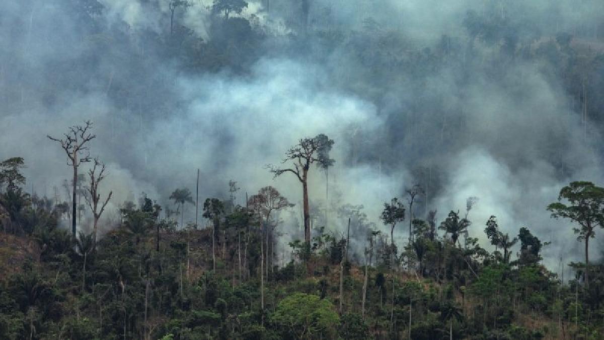 Según las cifras oficiales, en lo que va del año se registraron 78.383 incendios forestales en Brasil.