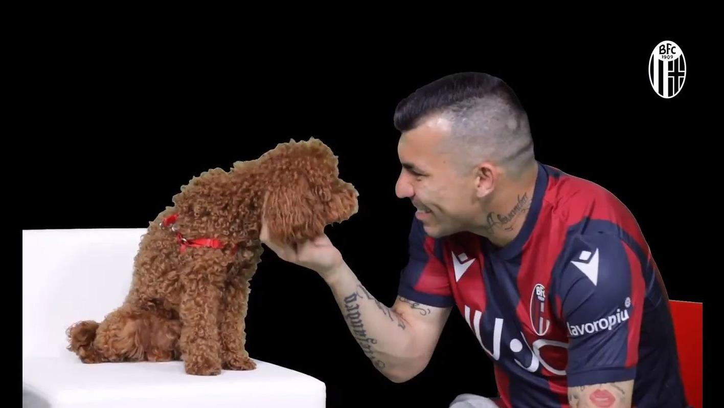 La insólita presentación de GAry Medel por el Bologna de la Serie A