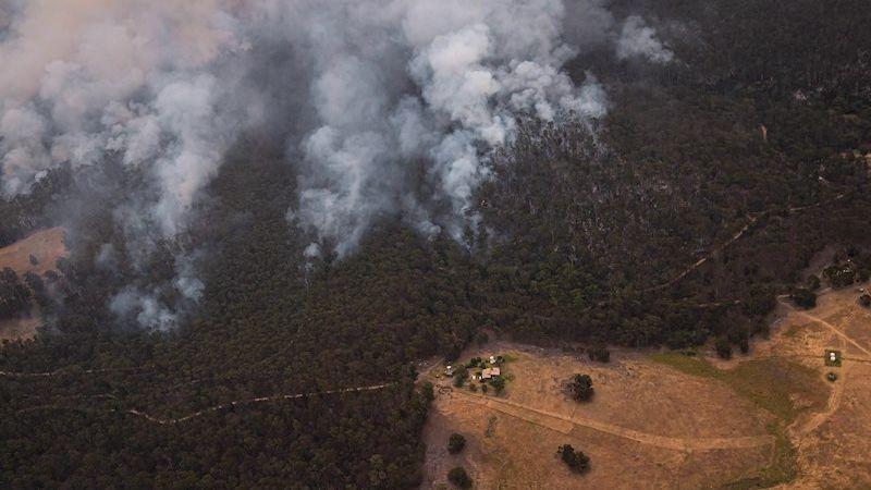 Los incendios forestales causarán también un desequilibrio en los ecosistemas de Australia.