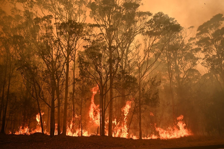 Unos 200 incendios seguían ardiendo este domingo en el sureste de Australia, donde las autoridades evaluaban los daños de la