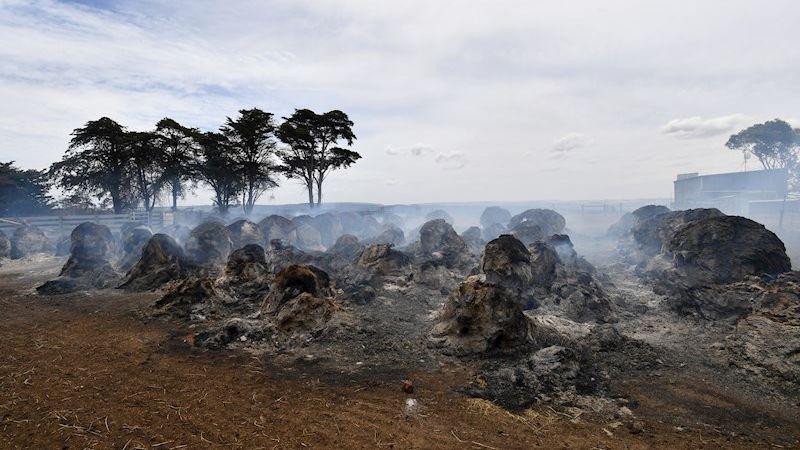 Los incendios en Australia han causado 26 muertos.