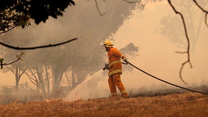 Los incendios han arrasado una superficie de más de 80.000 kilómetros cuadrados.