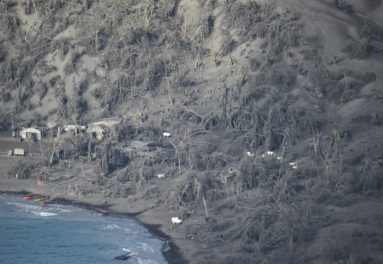 La isla se ha visto inundada por la lluvia de cenizas que se produjo en el momento de la entrada en erupción del volcán Taal, uno de los más activos del archipiélago de Filipinas.