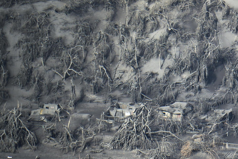 Elvolcán Taallanzó cenizas hasta una altura de 15 kilómetros el 12 de enero, provocando daños en casas, matando ganado y destruyendo cultivos en el entorno.