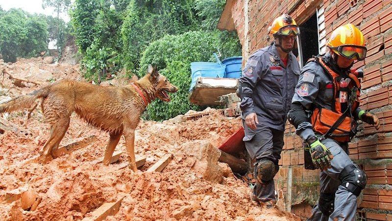 Entre los fallecidos figuran una madre, su bebé y un bombero que trabajaba en el rescate de varias personas en un cerro de Guarujá.