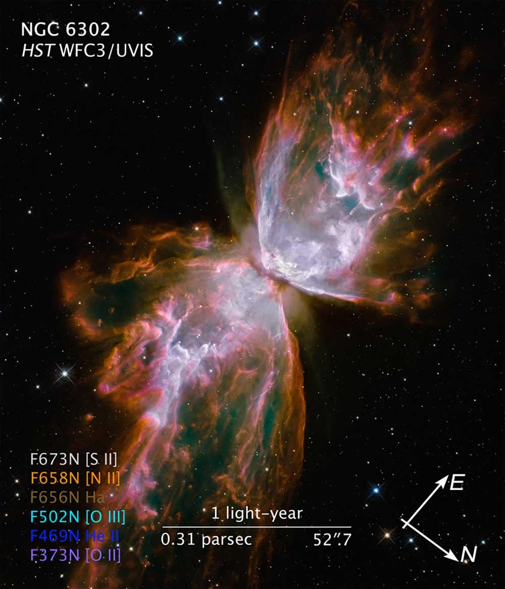 Una mariposa parece emerger de la muerte de una estrella en la nebulosa planetaria NGC 6302.