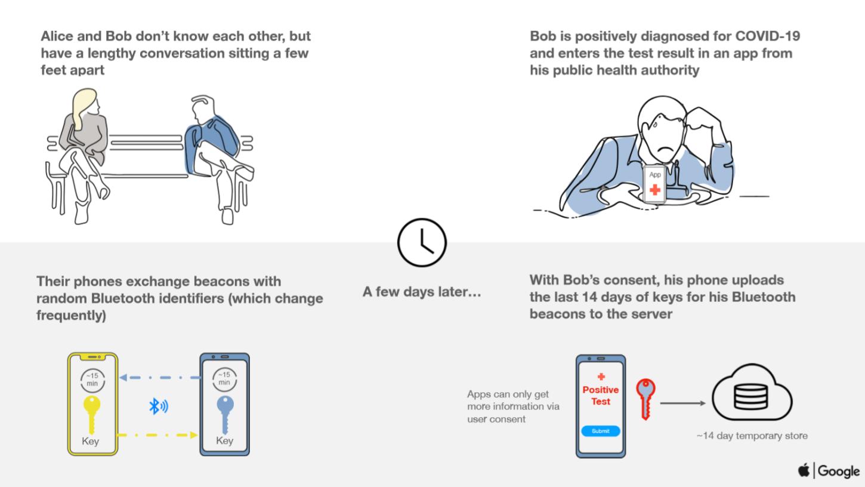 El usuario infectado recoge sus resultados en una app y lo comparte en la plataforma
